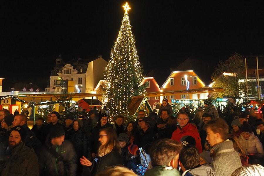 WaldweihnachtNachtChristbaum